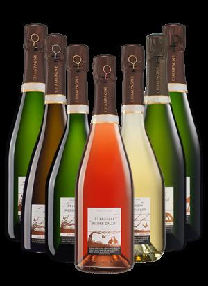 Boutique Champagne Pierre Callot - Panachage